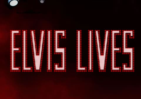 Recensione di Elvis Lives Video Slot Machine da WMS